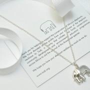 Raising money for elephants